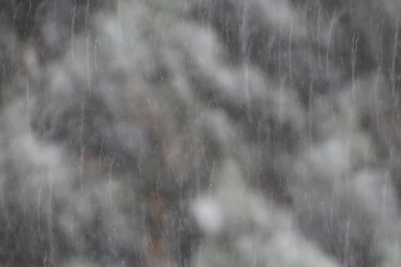 January 25 2014  Falling snow