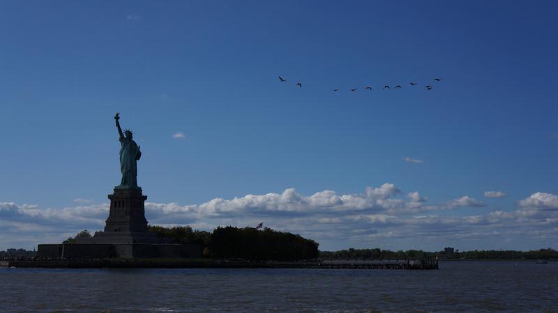 September 18 2011  Freedom