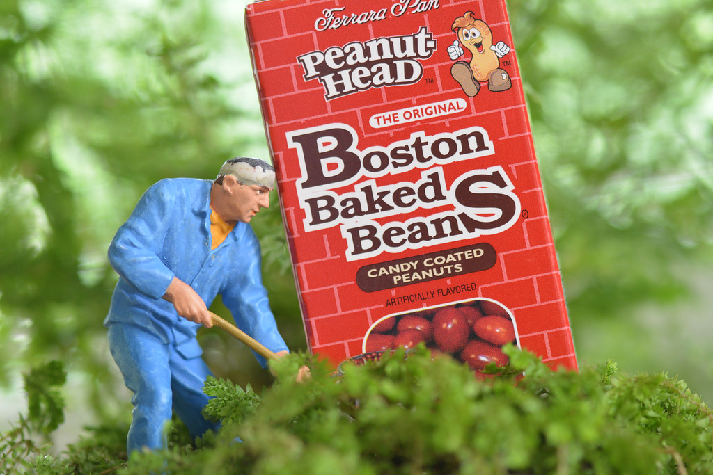 August 19 2013  Stan thought he would finally solve the mystery of how beans could be peanuts.