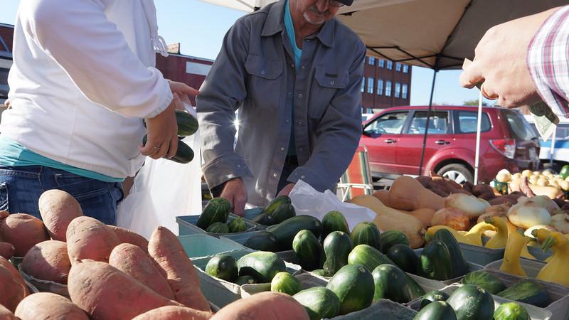 October 8 2011  Cucumbers