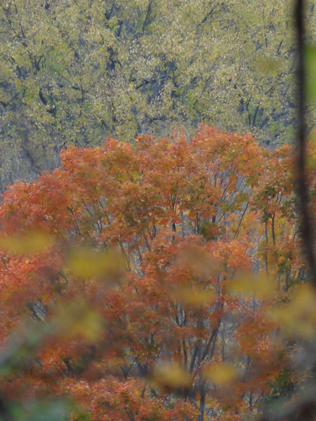 November 3 2012  Fall Layers