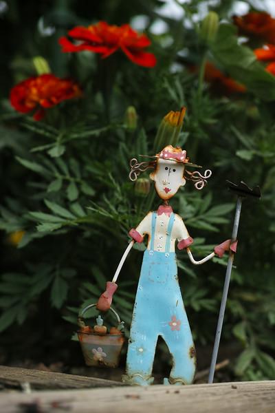 June 3 2014   Rusty gardener