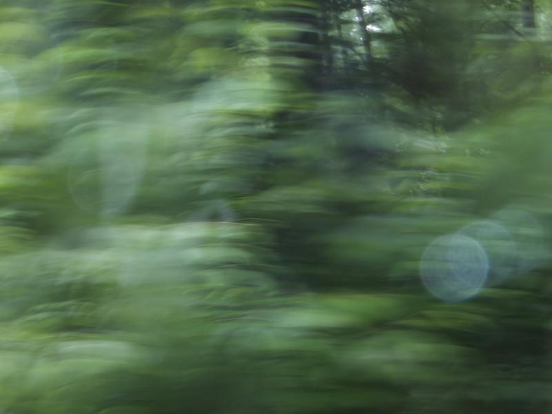 June 5 2011  Driving rain