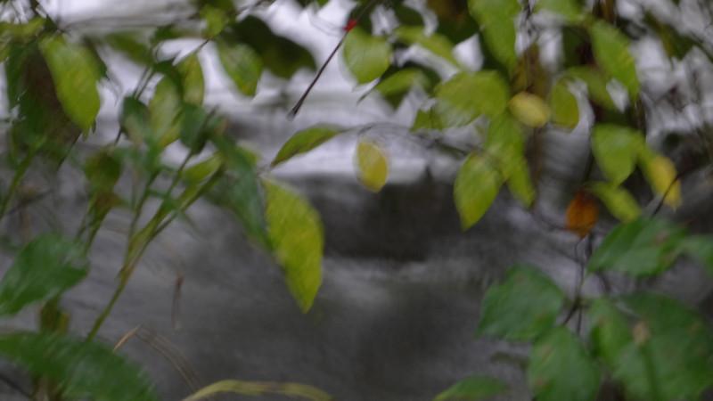 September 5 2011  Stormy day