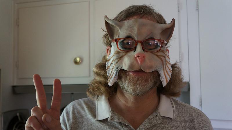 September 19 2011  Peace cat