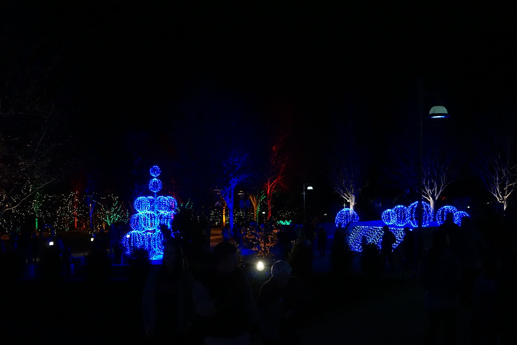 December 27 2014  Asheville's winter lights