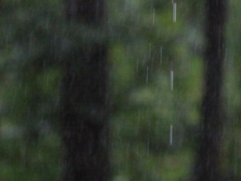 June 19 2011   Heavy rain