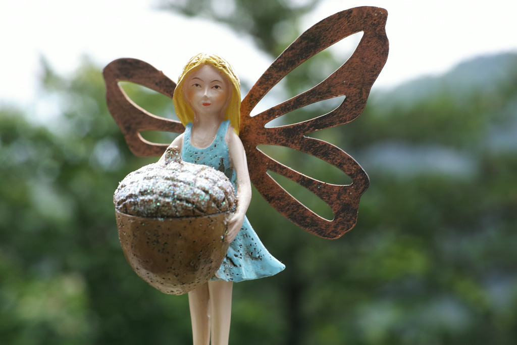 June 14 2014   Oak fairy