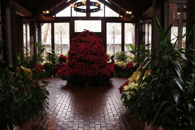 December 16 2012   Biltmore Christmas