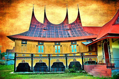 Most homes in West Sumatra have roofs in the shape of a bull's horns.