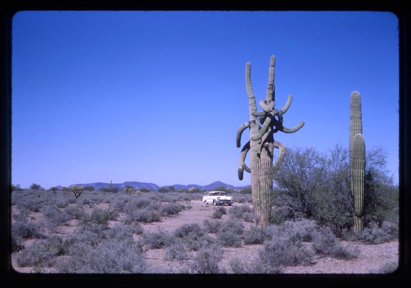 1962 -1964 Western Trip007.jpg