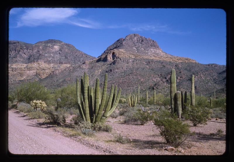 1962 -1964 Western Trip009.jpg