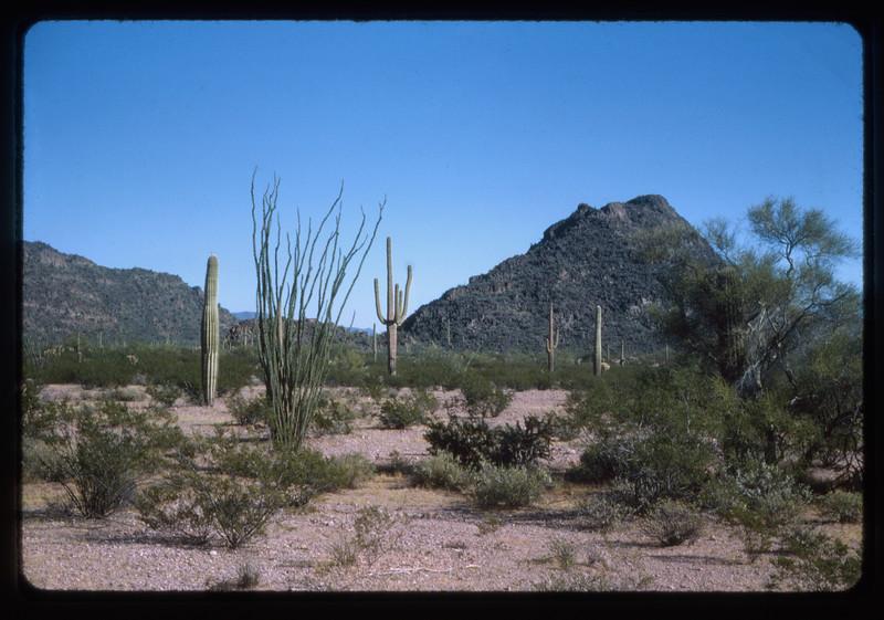 1962 -1964 Western Trip010.jpg