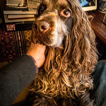 Charlie missing Mummy