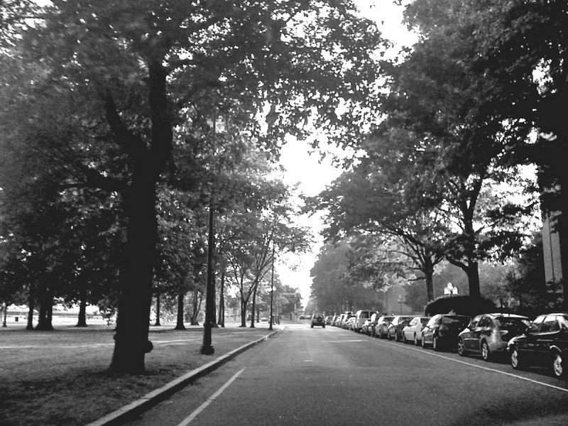 Memorial Drive<br /> iPhone 3G, edited with Photogene, iFlashready, Photo Filters: B&W