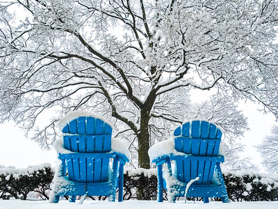 Have A Seat In A Blizzard