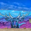 Street Art Craig - Colorado