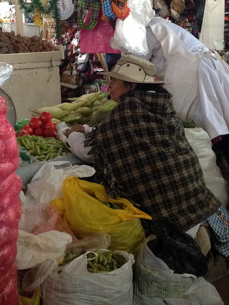 lady in the Market shelling peas