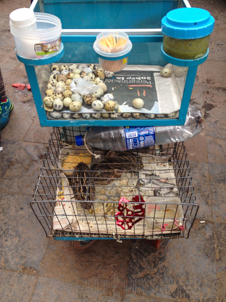 Quail eggs for luch at the Markets