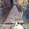 stone alleway