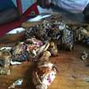 Road Side food - Kenya