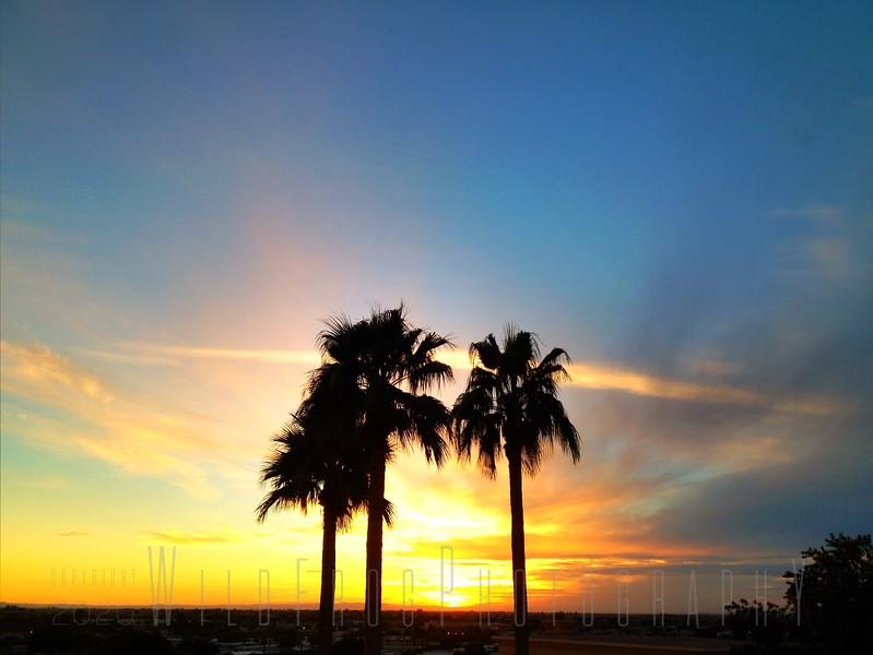 Yuma AZ Sunset
