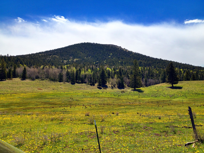 Brok Off Mountain - Carson National Forest - New Mexico