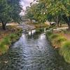 Avon River Christchurch