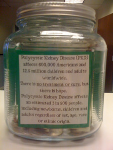 Info about what PKD is.