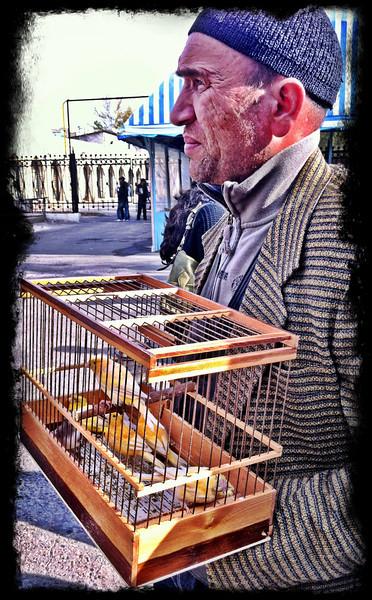 Bird Market, Tashkent