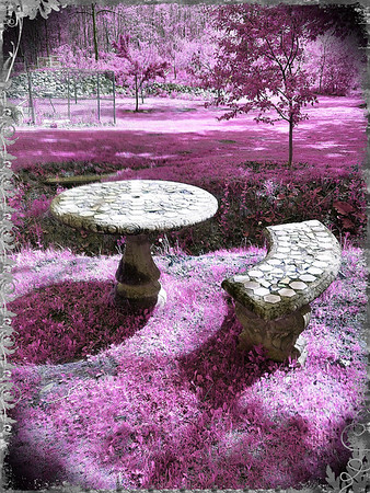 ~ The Mushroom Table ~