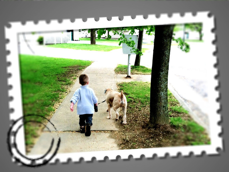 Kyler walked Alex around the appx half-mile circuit of housing this morning; no assistance required from Daddy.