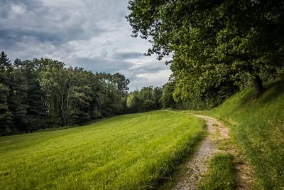 Chemin à l'arrière du village de Puidoux