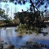 Relaxing at Audubon Park