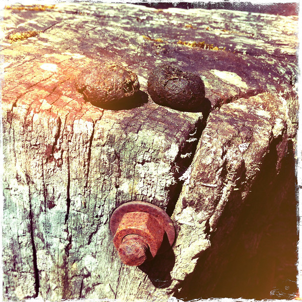 Okay, let's do it on a timber bollard. Mt Macedon. Camels Hump Carpark. 2012.