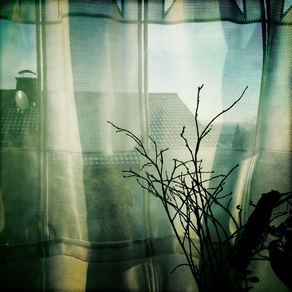 February 22, 2012 366/53<br /> Frickhofen, Germany