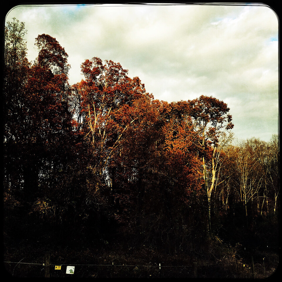 Athens, GA (Clarke County)  December 2016