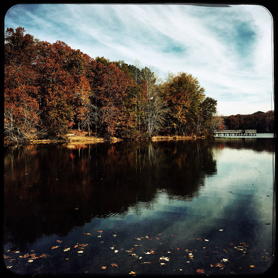 Sandy Creek Park, GA (Clarke County)  November 2016