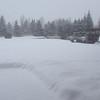 JH, Winter scenes, January, 2014 - 1