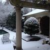 Snow Emergencies, Atlanta, Winter, 2014 - 6