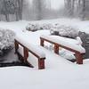 JH, Winter scenes, January, 2014 - 3