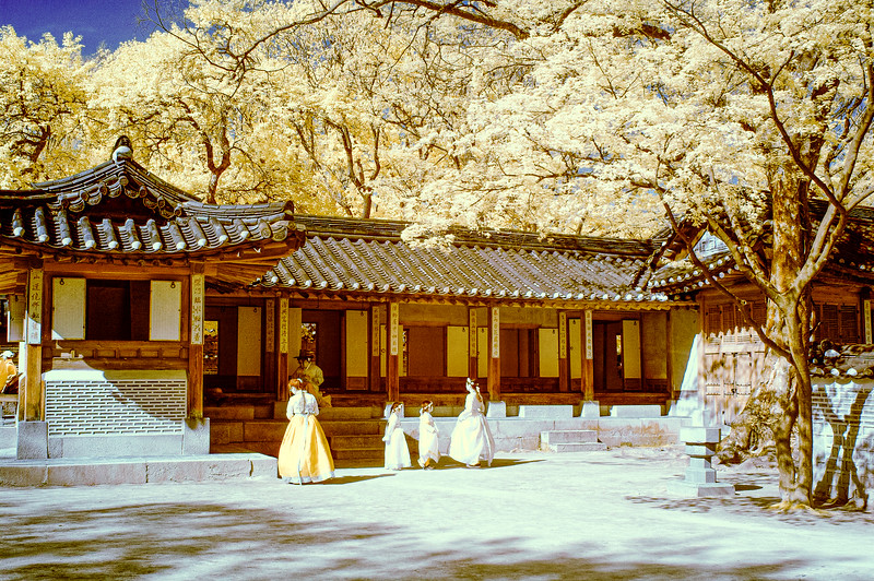 Color IR - Korea