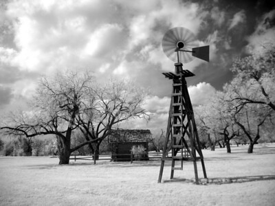 Infrared photo at Samual Park, Dallas, Texas