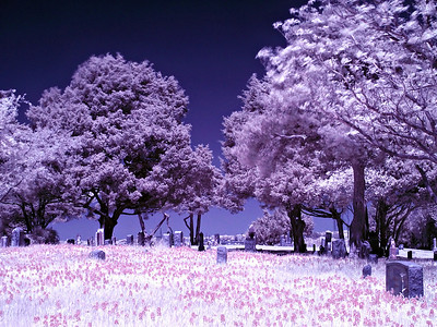 Infrared photo at local cemetary in Sunnyvale, Texas just off Beltline Road and NW Drive.