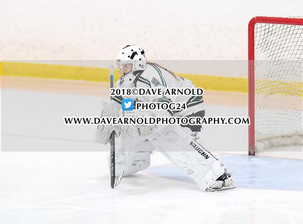 Girls Varsity Hockey: Andover defeated New Hampton 2-1 on February 3, 2018, at Phillips Andover in Andover, Massachusetts.