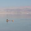 Man swimming in Dead Sea, Israel
