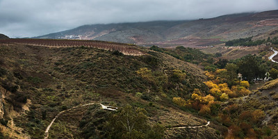 Scenic view of landscape, Nahal Ayoun Nature Reserve, Metula, Northern District, Israel