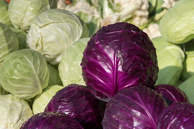 Cabbages for sale at market, Haifa, Haifa District, Israel