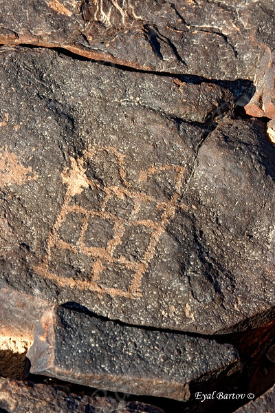 """ציורי סלע בהר כרכום Har Karkom (""""Mountain of Saffron"""""""