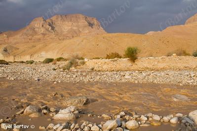 שיטפון בנחל חבר  מדבר יהודה  - Flash Flood in the Judean Desert